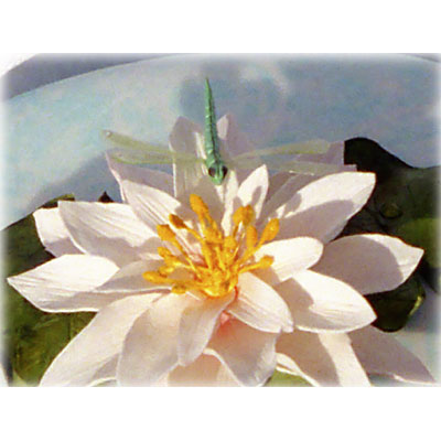 Sugarcraft Waterlily and Dragonfly