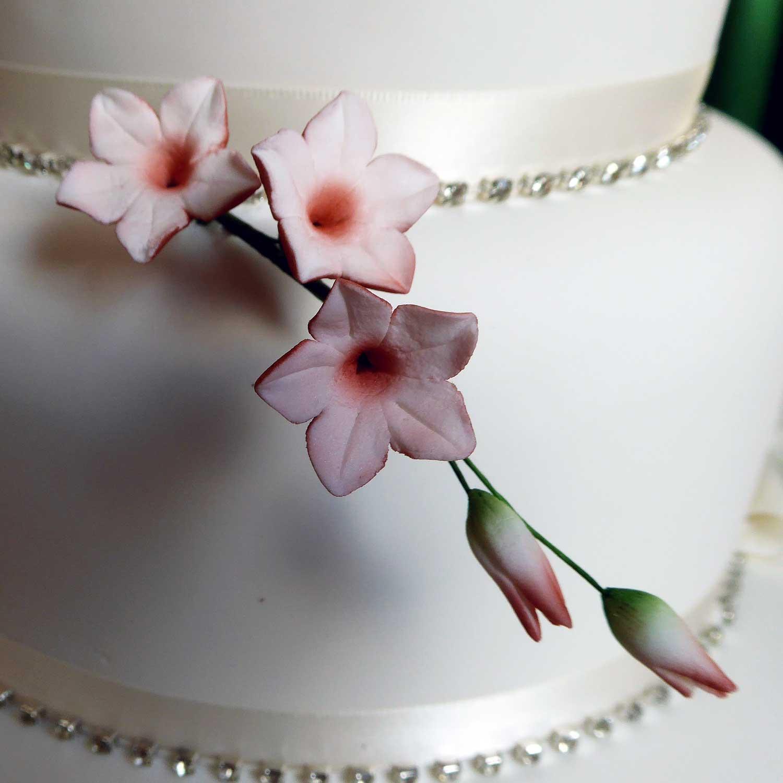 Sugarcraft Flowers Sugar Flowers Handmade In A Wide Range Of