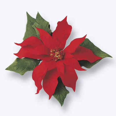 or red poinsettia - photo #49