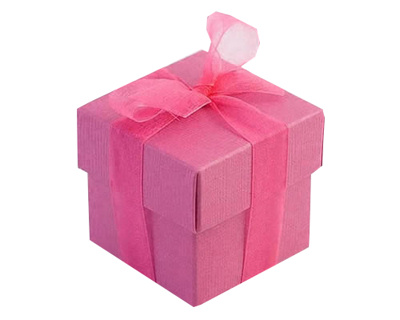 Hot Pink Wedding Favour Box