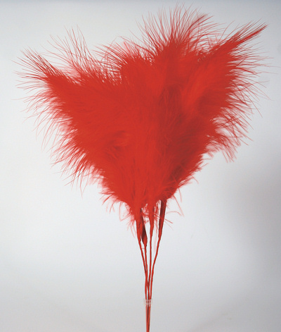 Red Feather Cake Toppers