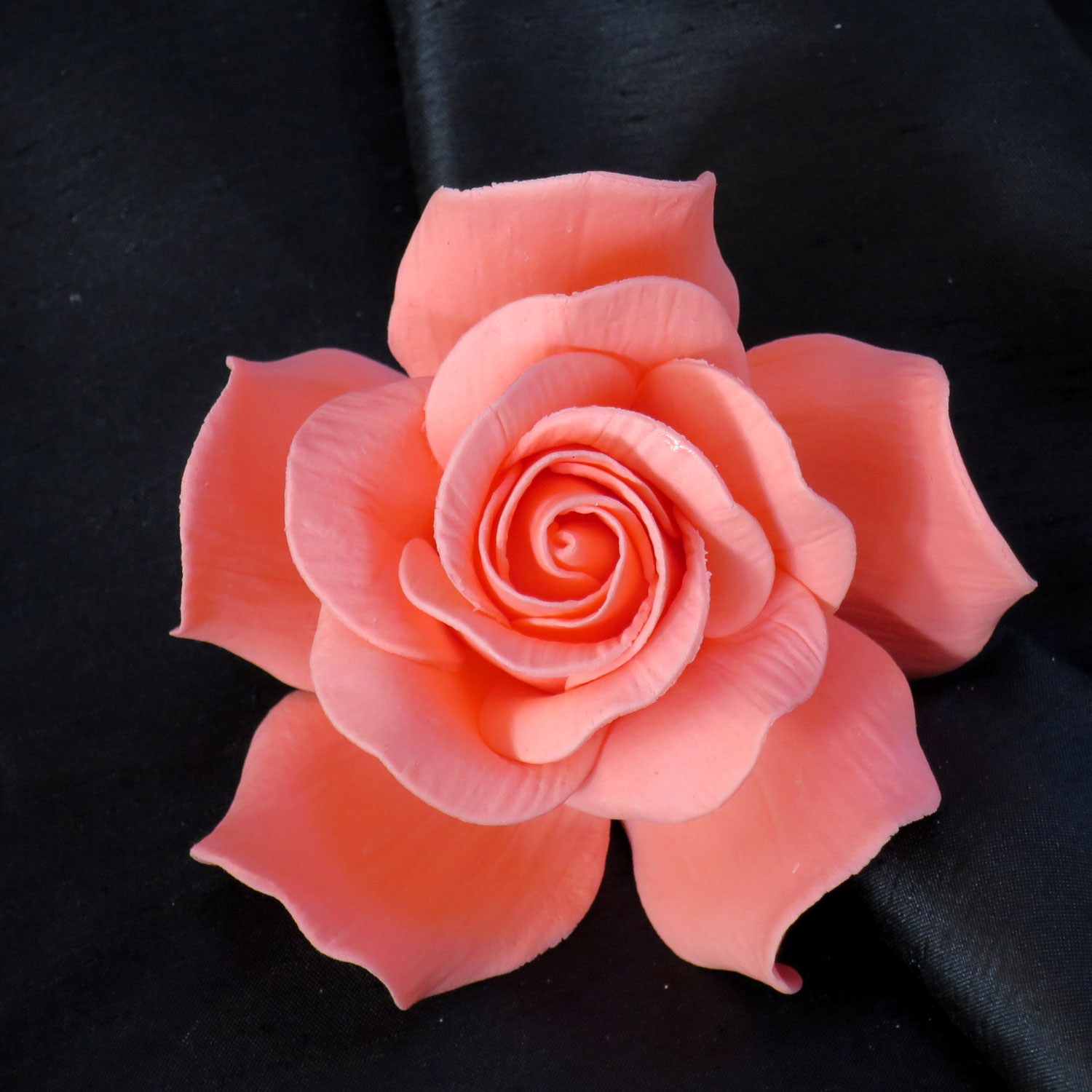 Giant Coral Sugar Rose