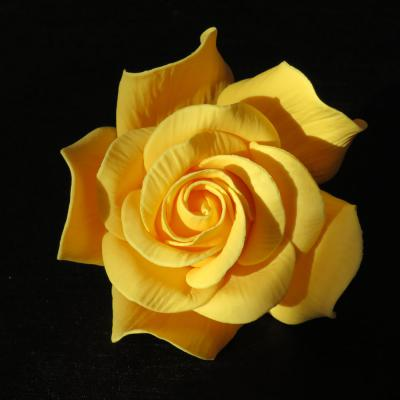 Giant Yellow Sugar Rose