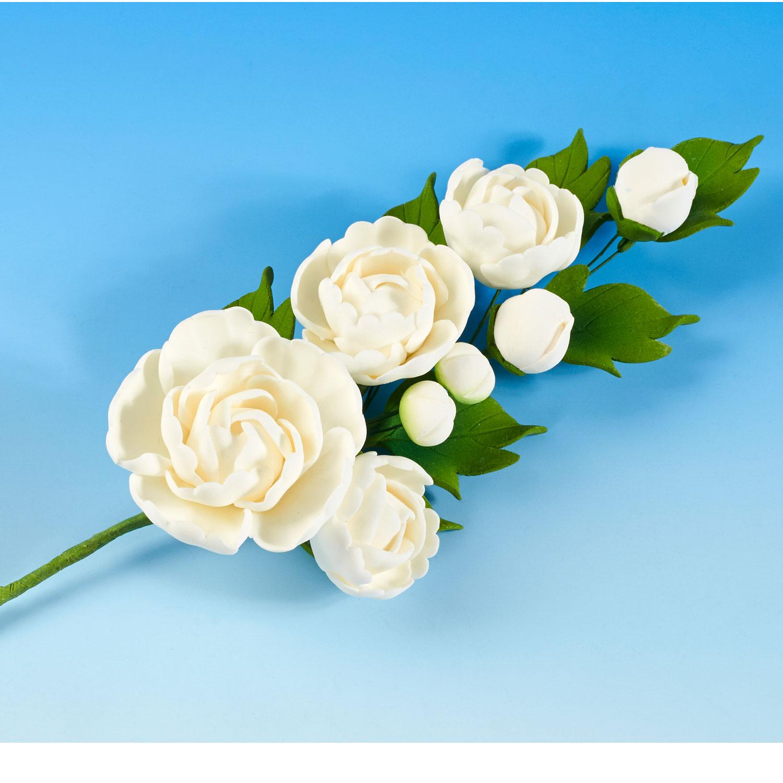 Sugarcraft flowers wedding cakes edinburgh scotland white peony rose spray izmirmasajfo