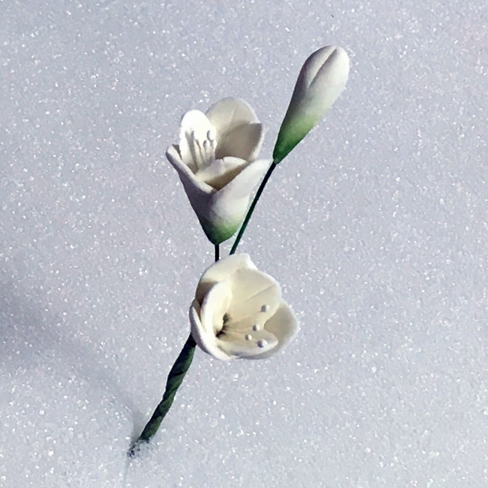 Bridal White Freesia Spray With Stamens