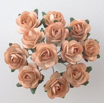 Miniature Roses for Wedding Favours
