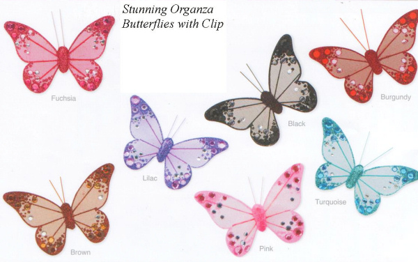 Organza Butterfly Selection