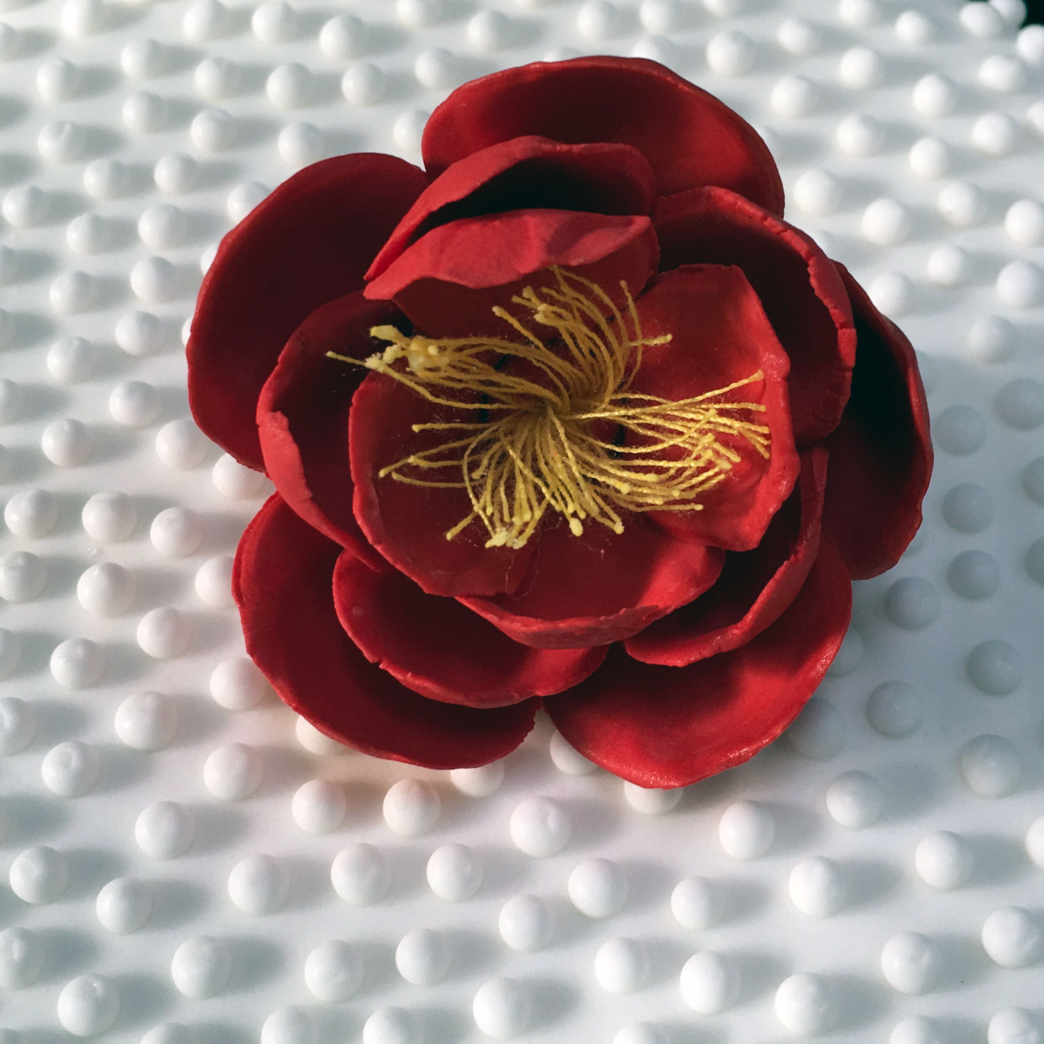 Red Christmas Rose