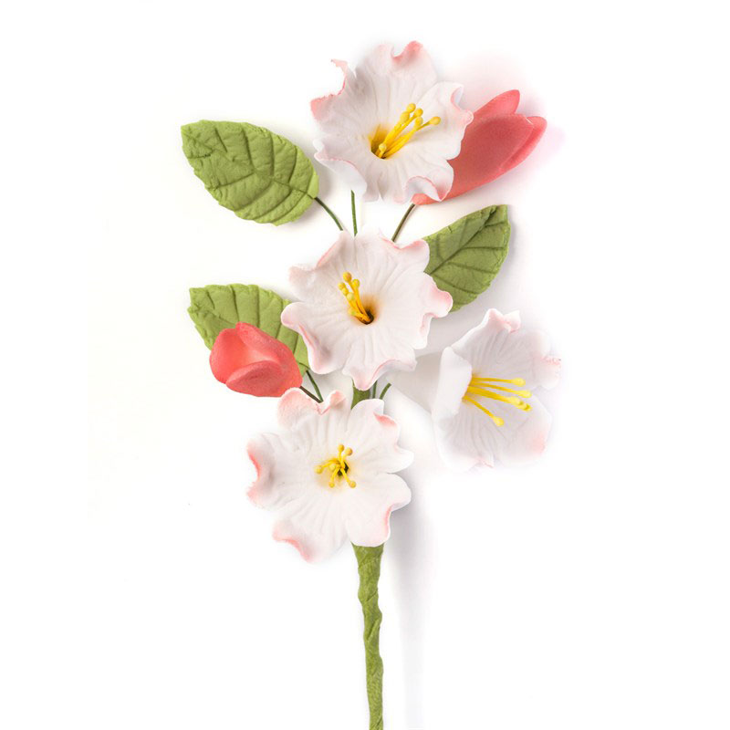 Apple Blossom Spray Sugarcraft Apple Blossom Sprays
