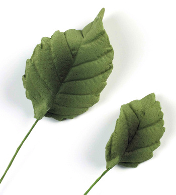 Sugar Rose Leaves