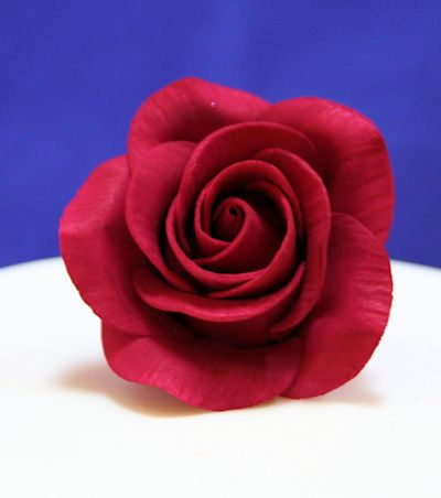 Burgundy Sugar Rose