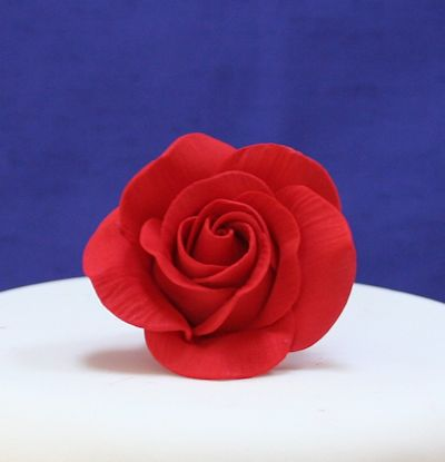 Red Sugar Rose